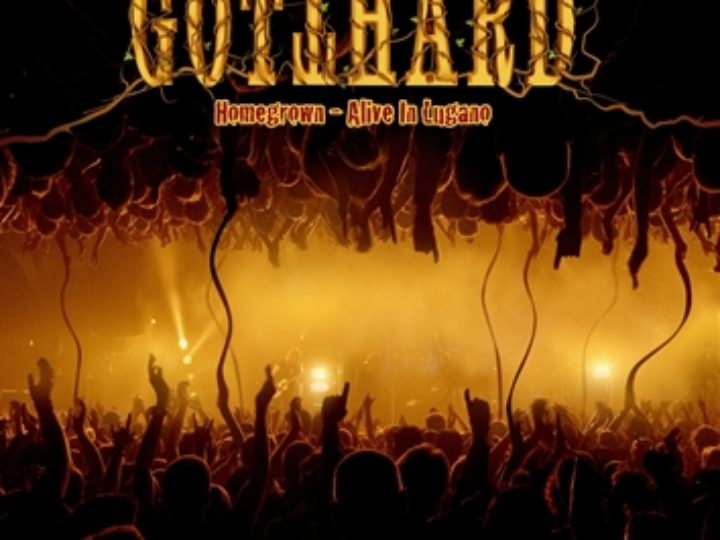Gotthard: Homegrown Live in Lugano