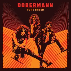 Dobermann – Pure Breed