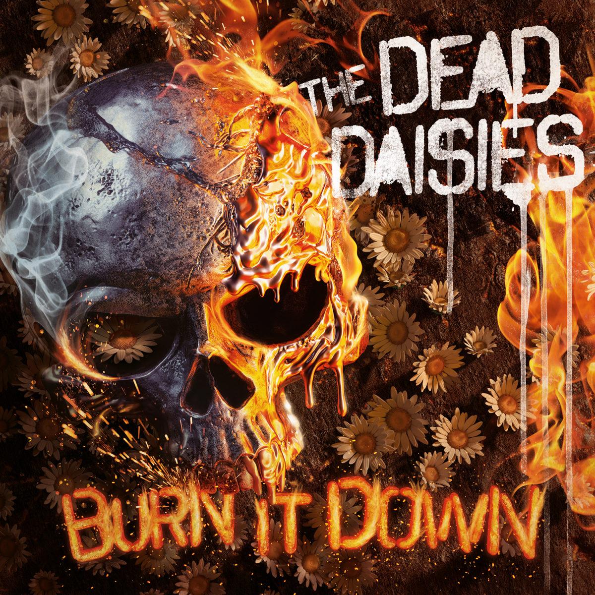 Risultati immagini per dead daisies burn it down cover album