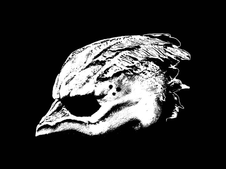 Legend Of The Seagullmen – Legend Of The Seagullmen