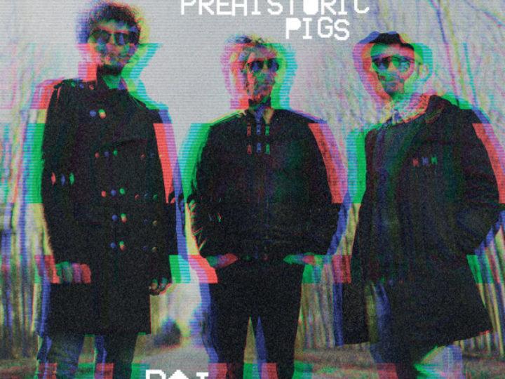 Prehistoric Pigs – Dai