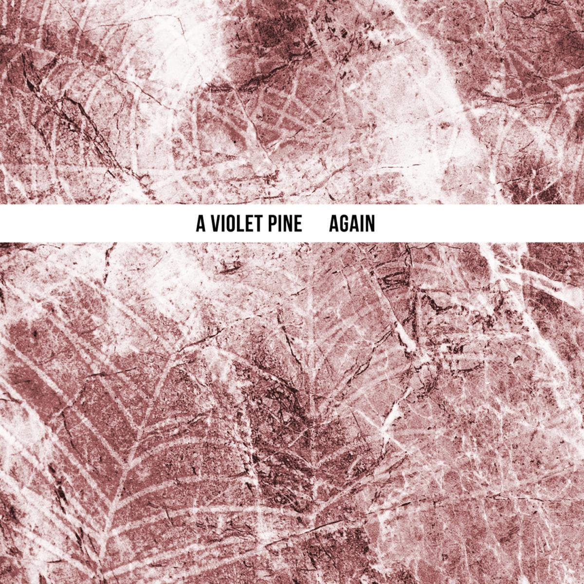Risultati immagini per a violet pine again