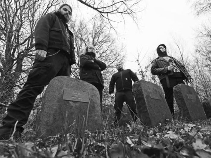 Fractured Insanity, nuovo album a febbraio