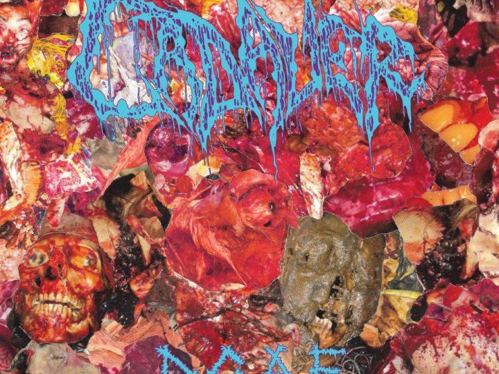 Cadaver – D.G.A.F.