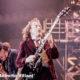AC/DC, iniziano i festeggiamenti per i 40 anni di 'Back in Black'