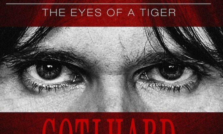 Steve Lee – La voce di una tigre